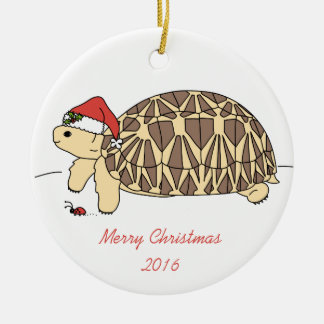 Customisable Star Tortoise Ornament