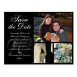 Customisable Wedding Save the Date Card 3 Pictures Postcard