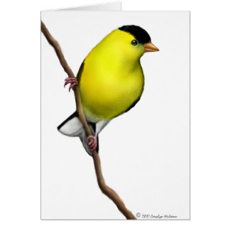 Customizable American Goldfinch Wild Bird Card