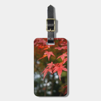 Customizable Autumn Leaves Luggage Tag