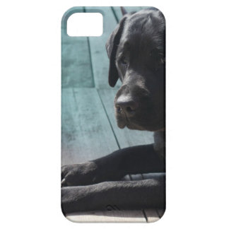 Customizable Black Labrador Retriever Case For The iPhone 5
