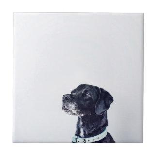 Customizable Black Labrador Retriever Ceramic Tile