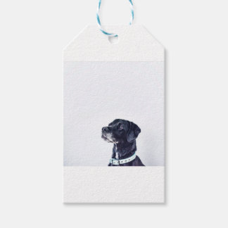 Customizable Black Labrador Retriever Gift Tags