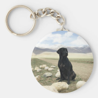 Customizable Black Labrador Retriever Key Ring