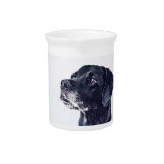 Customizable Black Labrador Retriever Pitcher