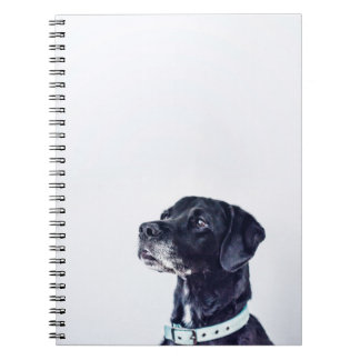 Customizable Black Labrador Retriever Spiral Notebook