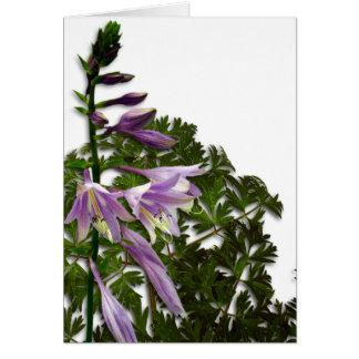 Customizable Blank Hosta Flowers Card