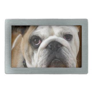 Customizable Bulldog Belt Buckles