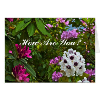 """CUSTOMIZABLE CARD, """"HOW ARE YOU?""""/RHODODENDRON CARD"""