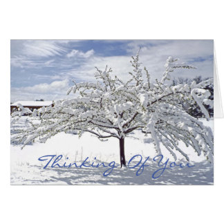 customizable Christmas card/Thinking of You/snow-c Card