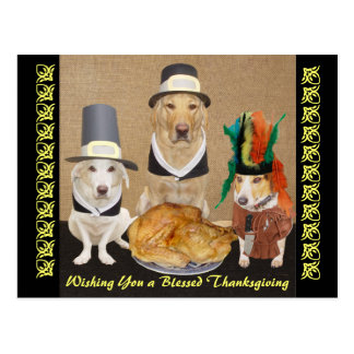 Customizable Funny Dogs Happy Thanksgiving Postcard