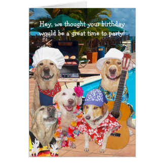 Customizable Funny Dogs/Labs by Pool Birthday Card