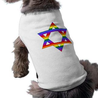 Customizable Gay Pride Rainbow Star of David Shirt