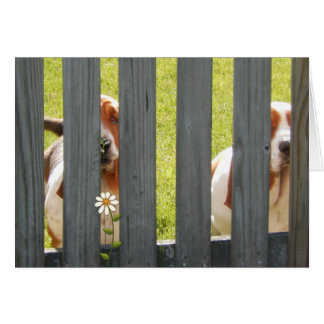 """Customizable """"Miss You"""" Greeting Card With Bassets"""