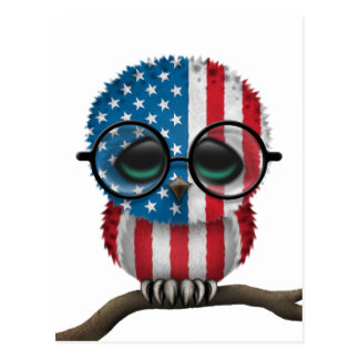 Customizable Nerdy American Baby Owl Chic Postcard