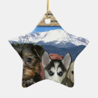 Customizable Pet Christmas Ornament