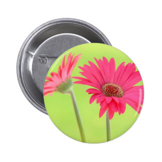 Customizable Pink Gerber Daisies on Green 6 Cm Round Badge