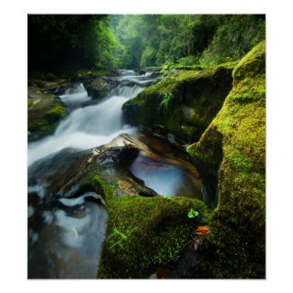 Customizable Poster: Chattooga River Waterfall Poster