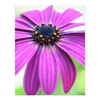 Customizable Purple Daisy 21.5 Cm X 28 Cm Flyer