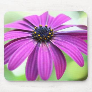 Customizable Purple Daisy Mouse Pad