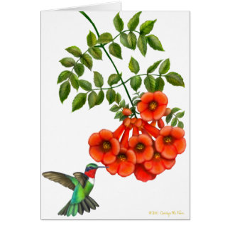Customizable Ruby Throated Hummingbird on Trumpet Card
