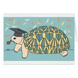 Customizable Star Tortoise Graduation Card 2