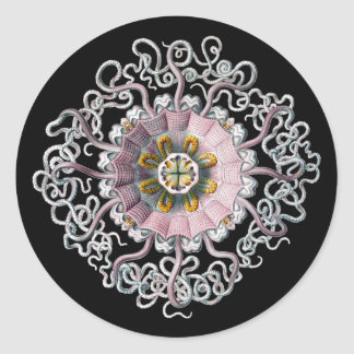 Customizable Vintage Haeckel Classic Round Sticker