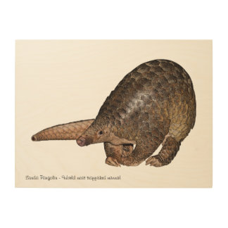 Customizable wood art with Sunda Pangolin print