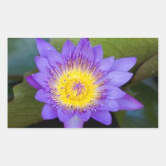 Customize Brilliant Blue Water Lily Bloom photo Rectangular Sticker