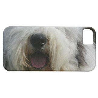Customize Product Barely There iPhone 5 Case