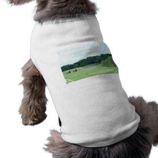 Customize Product - Customized Shirt