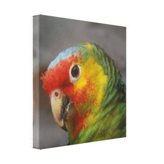 Customize Product Gallery Wrap Canvas