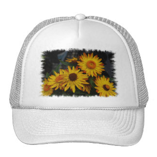 Customize Product Hats