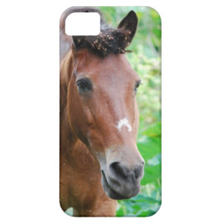 Customize Product iPhone 5 Covers