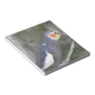 Customize Product Notepads