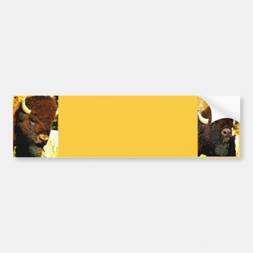 Customize this Bumper sticker