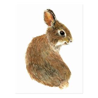 Customize this Curious Rabbit, Watercolor Animal Postcard