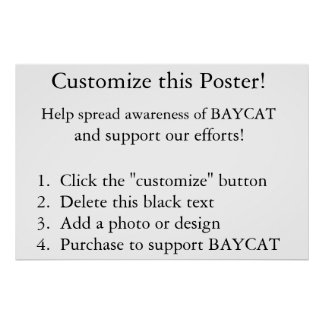 Customize this Poster!