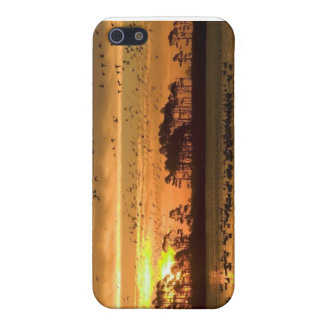 Customize your phone case iPhone 5 cases