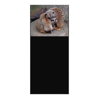 Customized Adorable Snuggling Meerkats Wildlife 10 Cm X 24 Cm Invitation Card