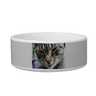 Customized Cat Dish Cat Water Bowls