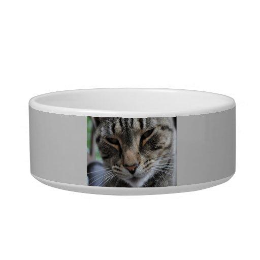 Customized Cat Dish Cat Water Bowls