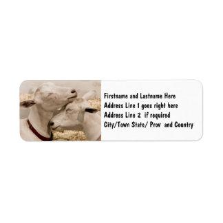 Customized Goat Farming Couple Return Address Label