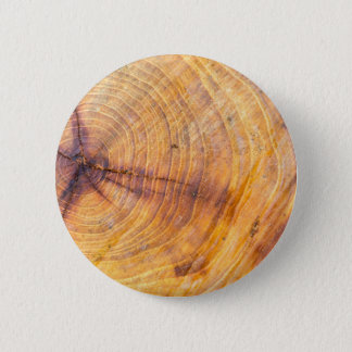 Cut down a tree with annual rings 6 cm round badge