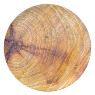 Cut down a tree with annual rings plate