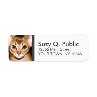 Cute Abyssinian Cat Label Return Address Label