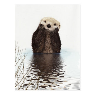 Cute adorable fluffy otter animal postcard