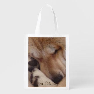 cute akita sleeping cuddling paws reusable grocery bag