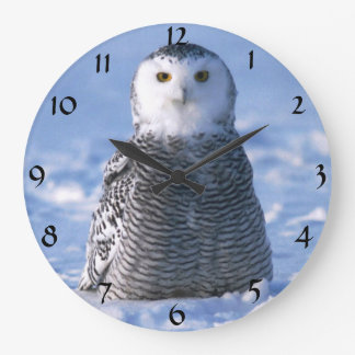 Cute Alaska Arctic Snowy Owl Winter Photo Designed Wallclock