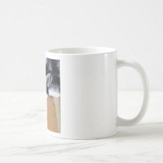 Cute Alaskan Malamute Face Coffee Mug
